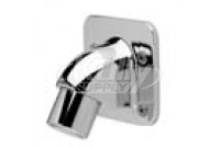Zurn Z7000-i2 Institutional Wall Mount Shower Head